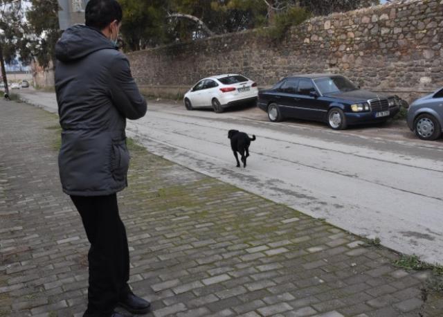 Başıboş köpeklerden korkan İzmirli adam çareyi köpek savarda buldu