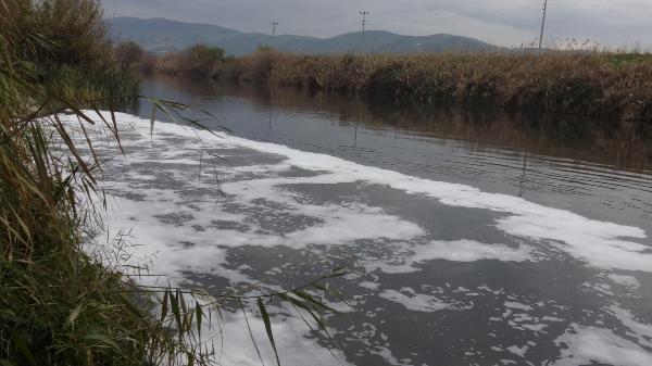 Büyük Menderes'te kirlilik kritik seviyeye ulaştı, nehrin rengi siyaha döndü