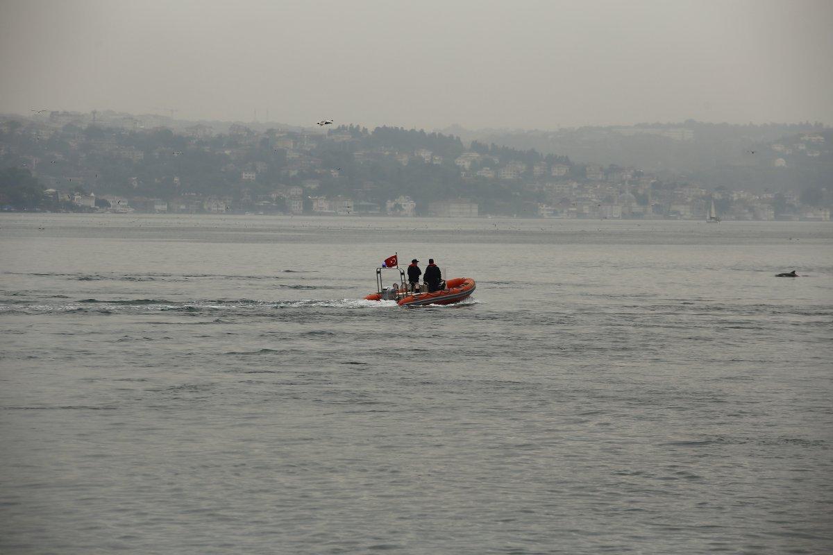 İstanbul Boğazı nda, yağmurla birlikte yunus balıkları görüldü #2