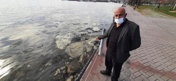 İzmit Körfez'inde korkutan manzara: Deniz yüzeyinde tabaka oluştu
