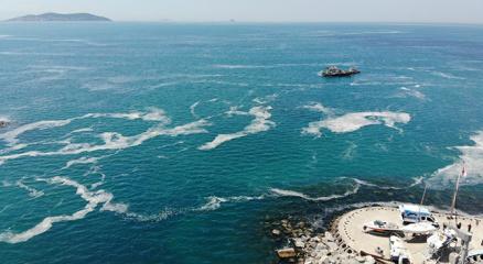 Marmara Denizindeki müsilajı araştırmak için komisyon kurulmasına karar verildi