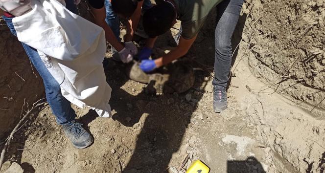 PKK içinde infazlar sürüyor
